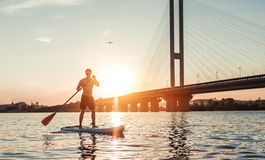 Man on SUP board. Man on stand up paddle board. Having fun on SUP board during sunset. Active lifestyle Royalty Free Stock Photography