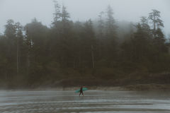 Man with surf walking on the the beach with forest behind in fog. Silhouette of person and forest on misty beach on Vancouver Island Royalty Free Stock Images