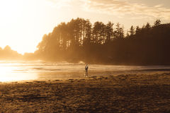 Man with surf walking on the the beach with forest behind while sunset. Silhouette of person and forest on sunset beach on Vancouver Island Royalty Free Stock Photos