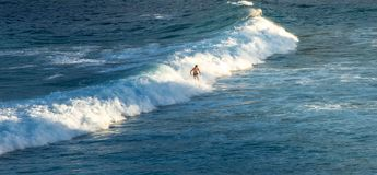 Man Surfer riding on his surfboard on the waves in summer Stock Images