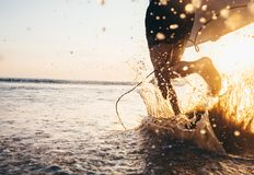 Man surfer run in ocean with surfboard. Closeup image water splashes and legs, sunset light royalty free stock photo
