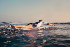 Man surfer swim on surfboard to waves line Stock Images