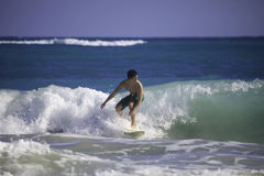 Man surfing in hawaii. Young asian american man surfing in hawaii Royalty Free Stock Photos