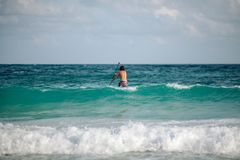 Man sails surfing on the waves in the Caribbean, in Cancun, Mexico. Man surfing with a paddle on the waves in the Caribbean, Cancun, Mexico stock photos