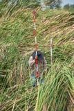 Man survey boundary of area Royalty Free Stock Photo