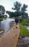 Man Surveying Hurricane Flood Waters Manteo North Carolina Royalty Free Stock Images