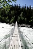 Man on suspension bridge Stock Photography