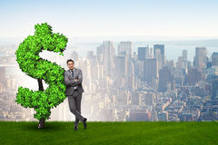 The man in sustainable investment concept. Man in sustainable investment concept Stock Image
