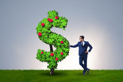 The man in sustainable investment concept. Man in sustainable investment concept Royalty Free Stock Photography