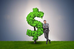 The man in sustainable investment concept. Man in sustainable investment concept Stock Photos