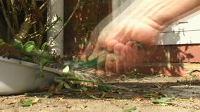 Man sweeping rubbish from patio slabs stock video footage
