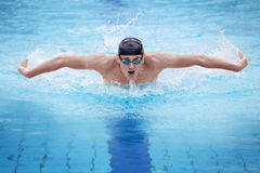 Man swimmer  performing the butterfly stroke
