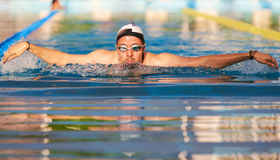 Man swimming butterfly style stock photos