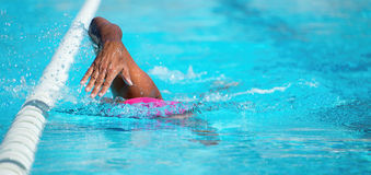 Man swimming the front crawl Royalty Free Stock Image