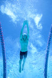 Man swimming lengths in swimming pool, underwater view royalty free stock photography