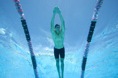 Man swimming lengths in swimming pool, underwater view Stock Images