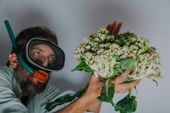 Man in swimming mask is holding  cauliflower. Cauliflower or coral. Comic story. A man with a beard and a swimming mask holds a cauliflower head in his hand like royalty free stock photography