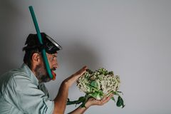 Man in swimming mask is holding  cauliflower. Cauliflower or coral. Comic story. A man with a beard and a swimming mask holds a cauliflower head in his hand like stock image