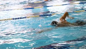 Man Swimming in Pool. Fit young male swimmer training in the pool. Young man swimming the front crawl in a pool. Young