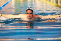 Man swimming in pool royalty free stock image
