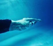 Man in swimming pool Stock Image