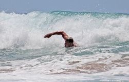 Man swimming in the sea Stock Photography