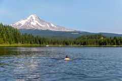 Trillium Lake with Mt Hood in the background royalty free stock images