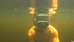 The man is swimming under the water. A man swims under the water in a lake among underwater vegetation. Freediving stock footage