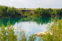 Man swims along the lake peaceful view. Of summer vacation Royalty Free Stock Photos