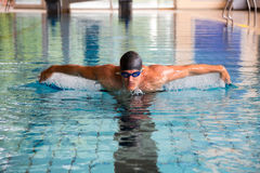 Man swims butterfly style in public swimming pool. Man swims butterfly style in indoor public swimming pool Stock Image