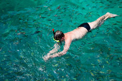 Man swims among the fish in a mask and a snorkel, Thailand Stock Images
