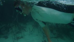 A man swims in freestyle under the beautiful sea. A close up shot of a man swimming in freestyle under the beautiful sea stock video footage