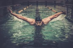 Man swims using breaststroke Stock Photography