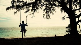 Man on Swing hang and tree on tropical beach. Summer holiday and vacation concept. Man on Swing hang and tree on tropical beach. Summer holiday and vacation stock video