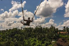 A man swinging over the rainforest stock images