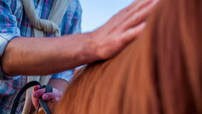 The man switch horse bridles to one hand to pat the horse. Slow motion close-up RAW footage of a man switch horse bridles to one hand to start patting the horse stock video