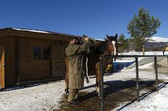 Man take off horse saddle. Selective focus Stock Photo