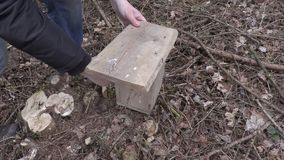 Man takes birdhouse and walking near tree stock video footage