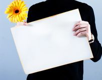 Man takes placard and flower Royalty Free Stock Images