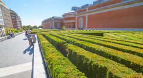 Man takes a smoke break beside the labyrynth of diagonal rows of shrubbery behind Prado Museum in Madrid Spain. Royalty Free Stock Photography