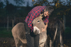 Man taking care of a donkey outdoor Royalty Free Stock Photo