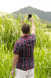 Man taking photo with smartphone. Man taking photo with smartphone of a mountain in Kauai Royalty Free Stock Photo