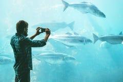 Man taking photo using smartphone of fish in big aquarium. Travel Lifestyle concept modern technology Royalty Free Stock Image