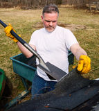 Man taking shingles off a shed roof Stock Photography