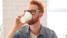 Man Taking Sip of Coffee, Sitting in Office royalty free stock photos