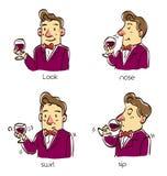 A man taste wine in four steps method. A man taste wine in four steps method, Cartoon  illustration Stock Photos