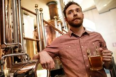 Man tasting fresh beer in a brewery.  royalty free stock images