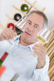 Man tasting glass red and white wine Royalty Free Stock Photo