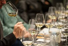 People tasting white wine and making notes at degustation card royalty free stock photography