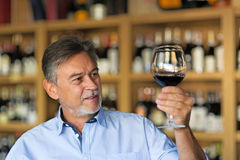 Man tasting wine. Man with a glass of red wine royalty free stock photo
